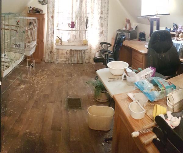 Lane Cleanup